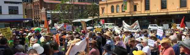 Pro-rail rally draws hundreds to Civic
